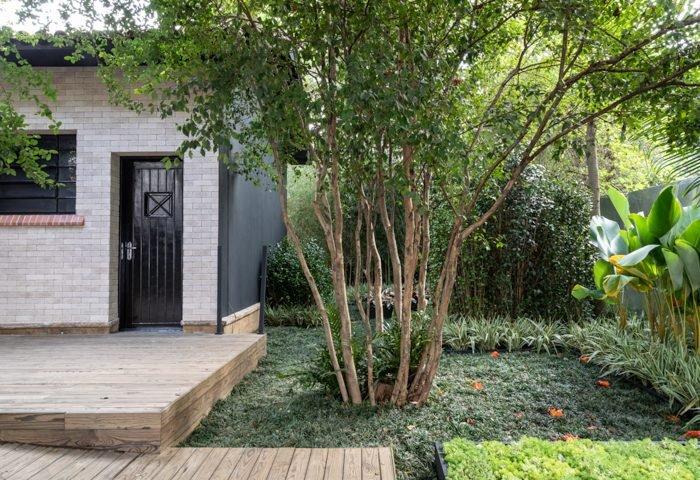 Ambiente: Jardim de Pandora Profissional: Alalou Paisagismo Foto: