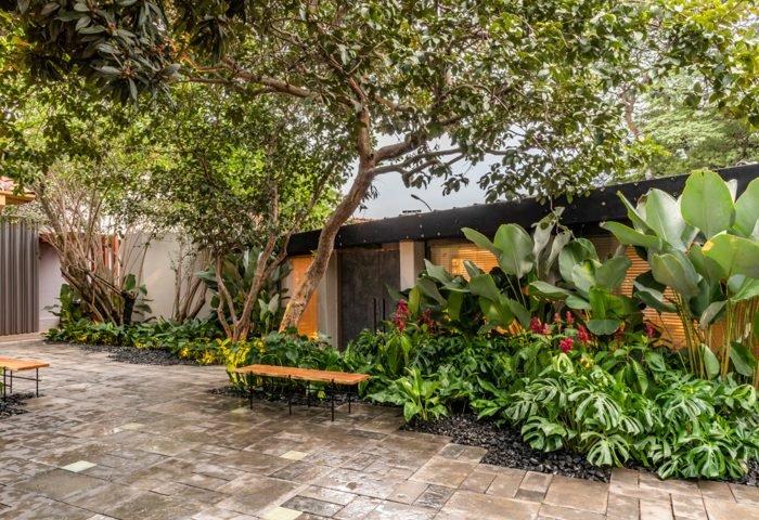 Ambiente: Jardim Bauhaus Profissional: Clariça Lima Foto: Renato Navarro